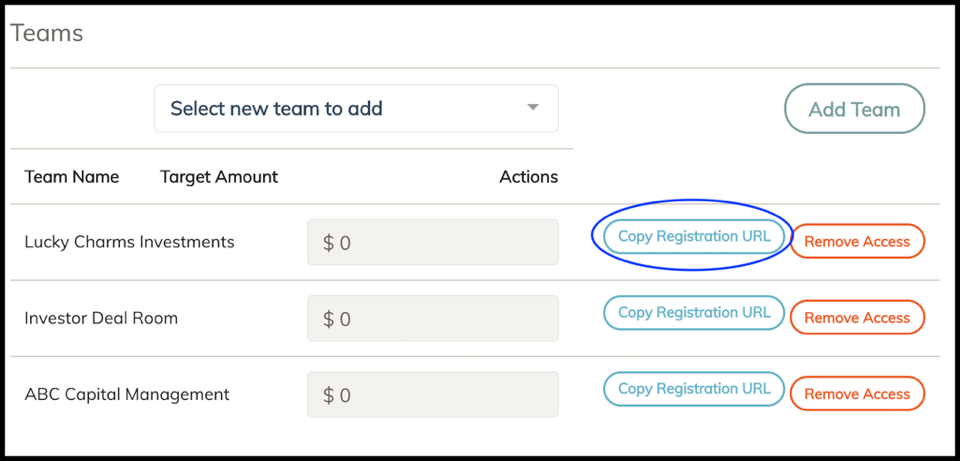 Screenshot of team registration area